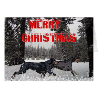 Cartão Dobermans do Natal da neve