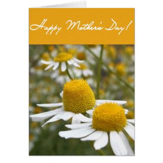 Cartão dobrado margarida do dia das mães