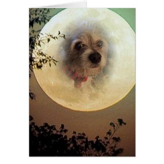Cartão doggy da lua