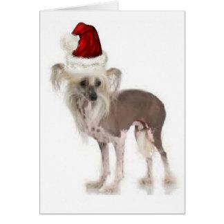 Cartão Dogs~Original Ditzy Notecard~Chinese Crested