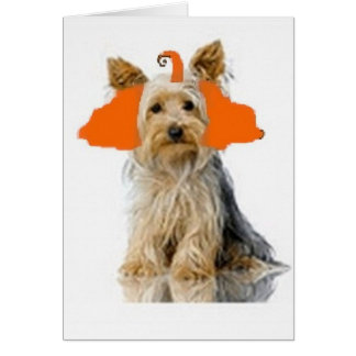 Cartão Dogs~Original Ditzy Notecard~Yorkie