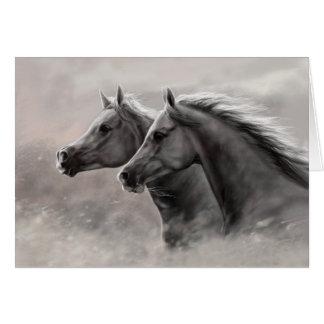 Cartão Dois cavalos que pintam garanhões pretos do