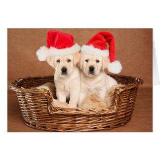 Cartão Dois filhotes de cachorro amarelos do Natal do