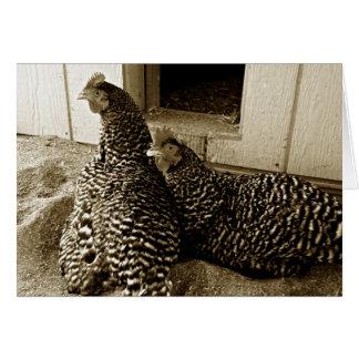 Cartão Dois melhores amigos das galinhas