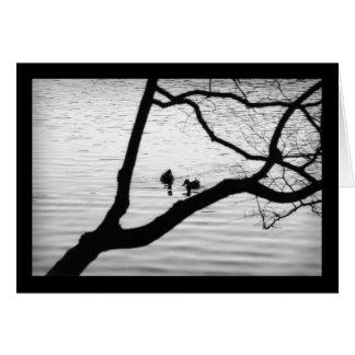 Cartão Dois pássaros - simpatia