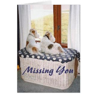 Cartão Dois terrier de Fox do fio na janela