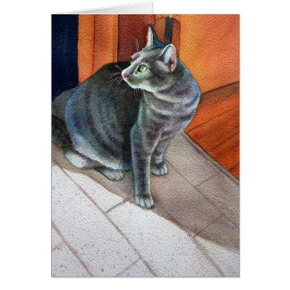 Cartão Dora, o gato de gato malhado cinzento,