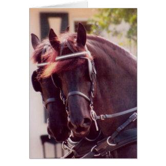 Cartão dos cavalos de carruagem do frisão