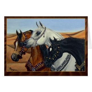 Cartão dos cavalos dos reis Árabe do deserto