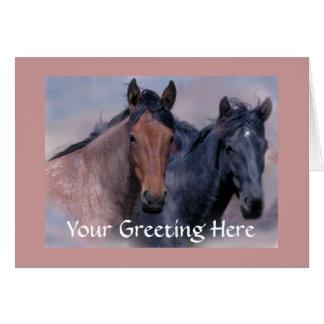 Cartão dos cavalos selvagens