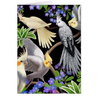 Cartão dos Cockatiels e das flores