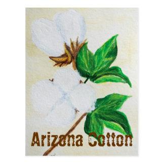 Cartão dos fatos do algodão da arizona
