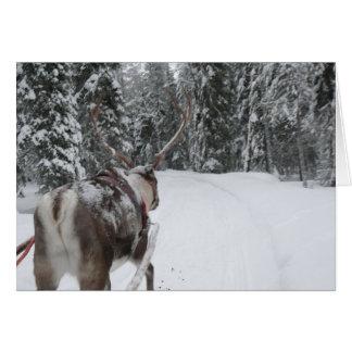 Cartão dos feriados do cartão de Natal da rena de