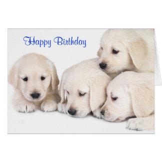 Cartão dos filhotes de cachorro de labrador retrie