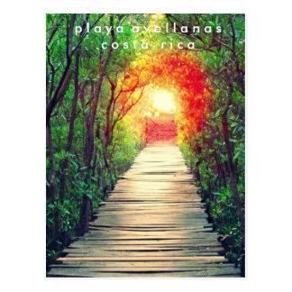 Cartão dos manguezais de Costa Rica Playa