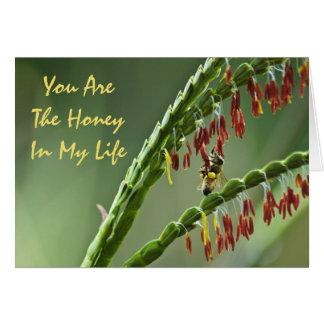 Cartão dos namorados da abelha do mel
