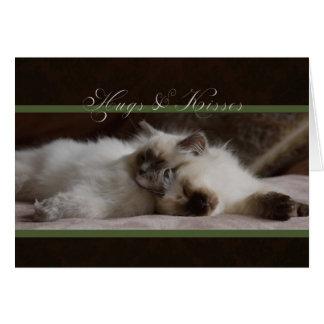 Cartão dos namorados dos abraços e dos beijos