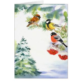 Cartão dos pássaros do inverno da aguarela