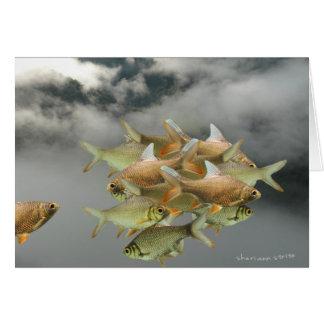 Cartão dos peixes & da névoa