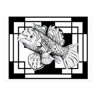 Cartão dos peixes do mandarino do estúdio de ZNDC