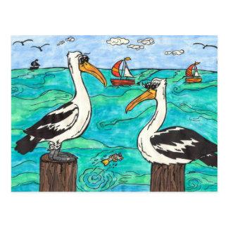 Cartão dos pelicanos