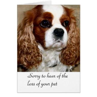 Cartão dos pêsames do cão