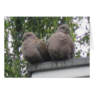 Cartão dos pombos