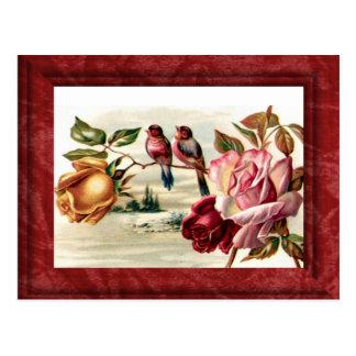 Cartão dos rosas do pássaro do vintage
