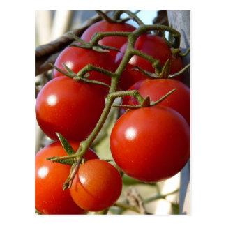 Cartão dos tomates