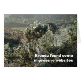 Cartão dos Web site