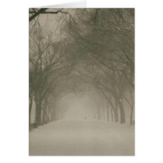 Cartão Dossel em uma tempestade de neve