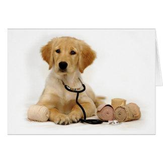 Cartão Doutor dourado do filhote de cachorro
