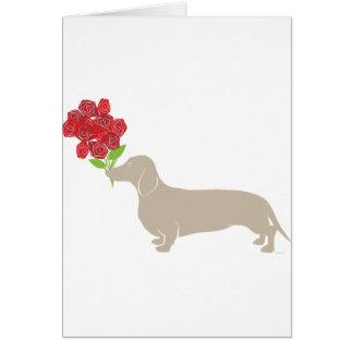 Cartão Doxie entrega 12 rosas vermelhas - dia dos