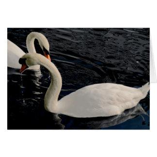 Cartão Duas cisnes