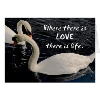 Cartão Duas cisnes no lago