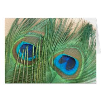 Cartão Duas penas douradas do pavão