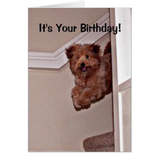 Cartão É seu animal de estimação feliz excitado