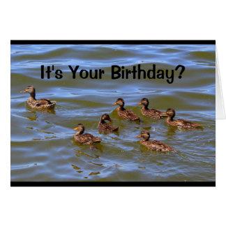 Cartão É seu aniversário? Poço que é apenas Ducky!