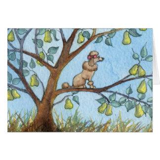 Cartão … E um poo-oodle em uma árvore de pera…