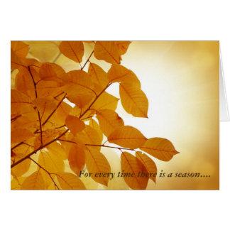 Cartão Ecclesiastes consolação de 3 estações