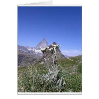 Cartão Edelweiss e Matterhorn