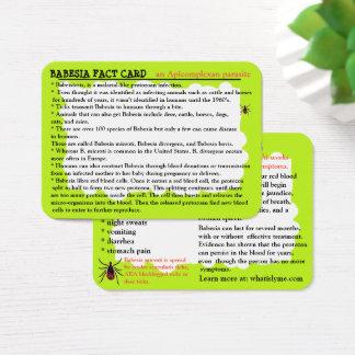 Cartão educacional do fato de Babesia