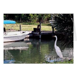 Cartão Egret