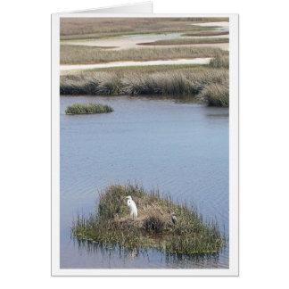 Cartão Egret em casa