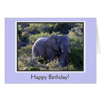 Cartão Elefante no feliz aniversario das árvores