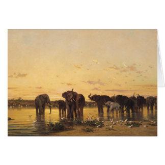 Cartão Elefantes africanos