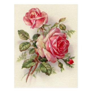 Cartão elegante do rosa floral do vintage