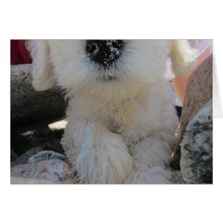 Cartão Endureça o filhote de cachorro bonito feito sob