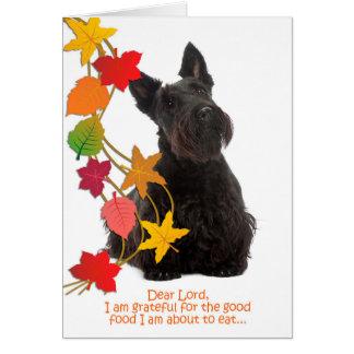 Cartão engraçado da acção de graças do Scottie