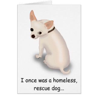 cartão engraçado da chihuahua